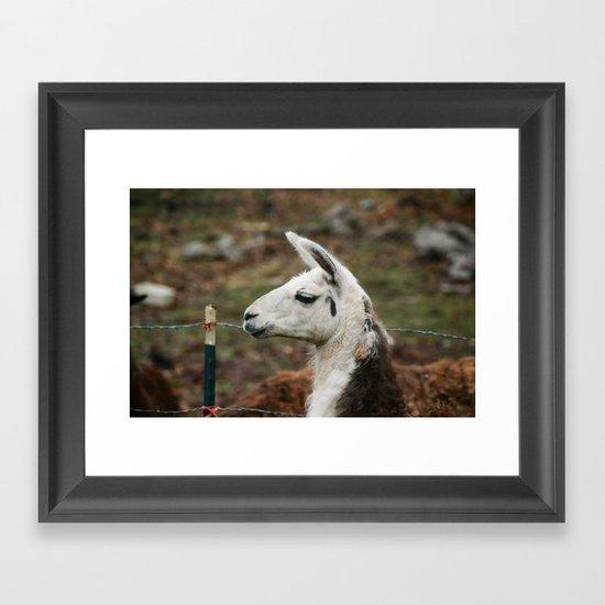Yarmi Framed Art Print