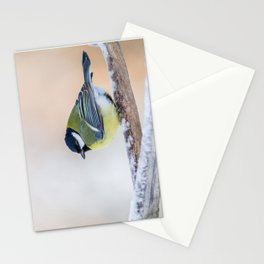 Male Great Tit Stationery Cards