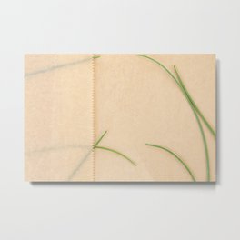 Fresh Chives and Parchment paper background Metal Print