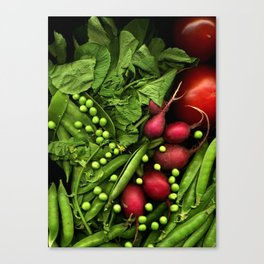 Summer Salad Canvas Print