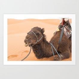 Desert Trek - Sahara, Morocco Art Print