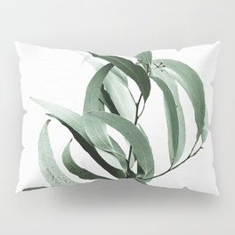 Eucalyptus - Australian gum tree Pillow Sham