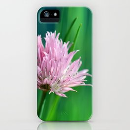 Allium pink 076 iPhone Case