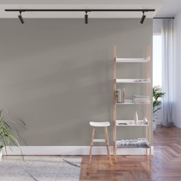 Fossil Gray Solid Color Pairs with Sherwin Williams Haven 2020 Forecast Color Functional Gray SW7024 Wall Mural