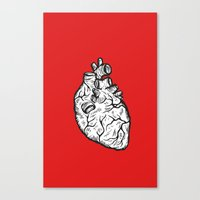 anatomical heart Canvas Prints featuring Anatomical Heart by Horse and Hare
