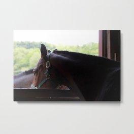Elizabeth Horse Barn Metal Print