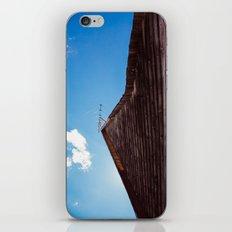 Lake House iPhone & iPod Skin