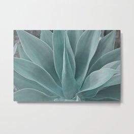 Azul Agave Plant Metal Print