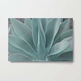 Azul Succulent Agave Plant Metal Print