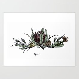 Fynbos Colour Art Print