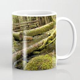 McKenzie River Trail No 1 Coffee Mug