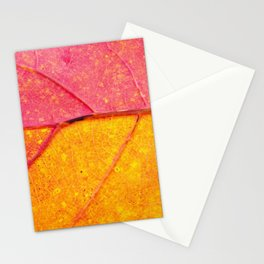 Nature Abstract: Cells and Veins of a Colorful Close up Autumn Leaf Stationery Cards
