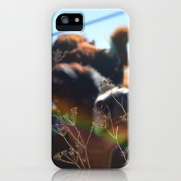 Give Love iPhone Case