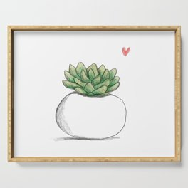 Succulent in Plump White Planter Serving Tray