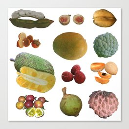 Exotic Fruit Collage Canvas Print