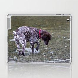 German Shorthaired Pointer Dog Laptop & iPad Skin