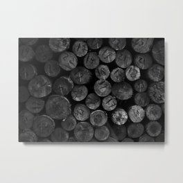 The Last Forest Metal Print