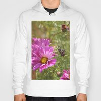 seashell Hoodies featuring Seashell Cosmos by Stecker Photographie
