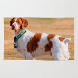 Brittany Spaniel Dog Beautiful Rug