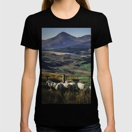 Sheeps in mountains T-shirt