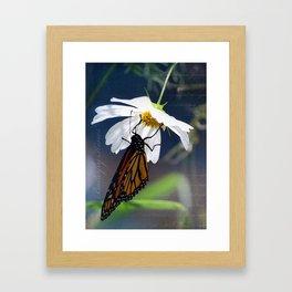 Butterfly Kisses Framed Art Print