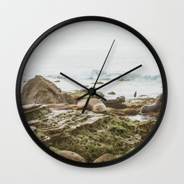 Seal Napping on the Rocks in La Jolla, San Diego Wall Clock