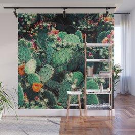 Cactus Garden - Succulent, Plants Photography Wall Mural