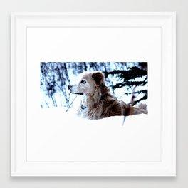 Harley sitting in the snow Framed Art Print