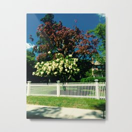 White Hydrangeas White Fence Hamptons Metal Print