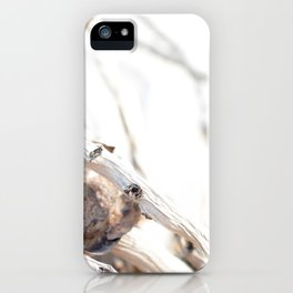 Drifted Palm iPhone Case