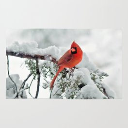 Cardinal on Snowy Branch (sq) Rug