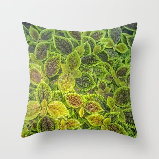 Friendship plant Throw Pillow