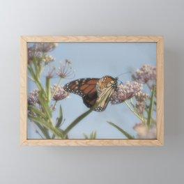 Monarch Butterfly XVII Framed Mini Art Print