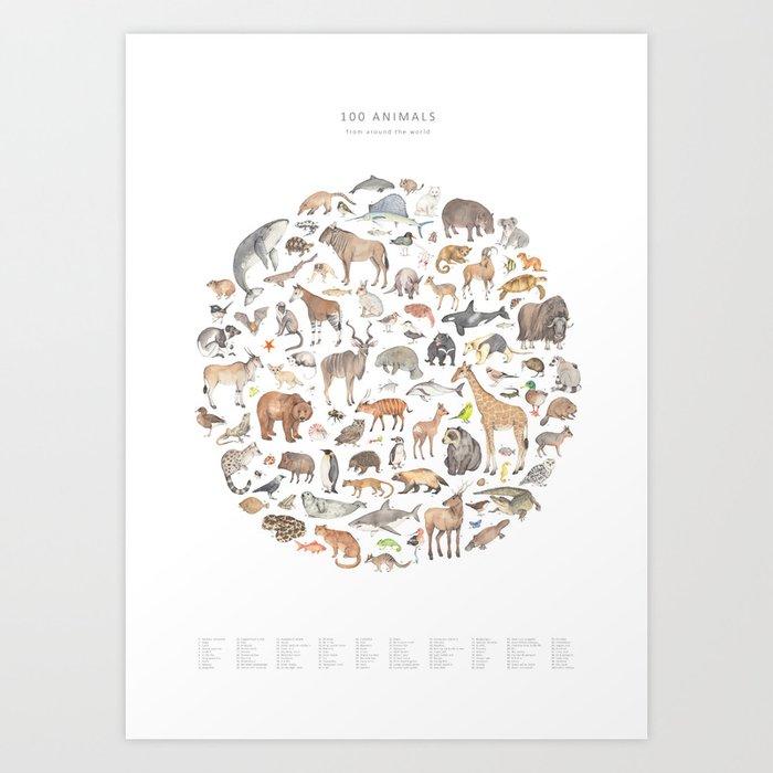 100 animals Kunstdrucke