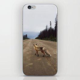 Road Fox iPhone Skin