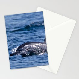 Group of bottlenose dolphins Stationery Cards