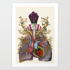 adore anatomical heart lungs collage by bedelgeuse Art Print