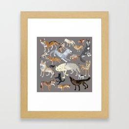 Wolves of the world 1 Framed Art Print