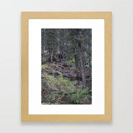 Forest Hunting Framed Art Print