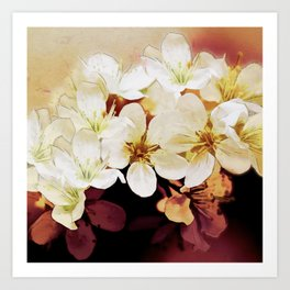 Blossom 06-18 Art Print