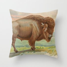 Vintage Illustration of a Buffalo (1890) Throw Pillow
