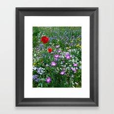 Wild Flower Meadow Framed Art Print