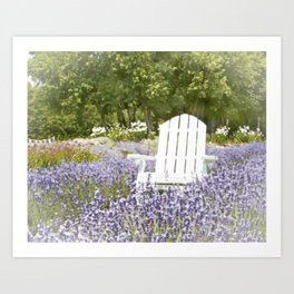White Chair in a Field of Purple Lavender Flowers Art Print