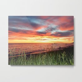 Dawn and the Grass Metal Print