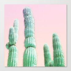 Cactus Pop Canvas Print