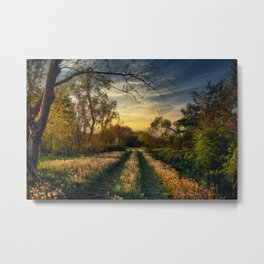 A Country Road In A Field Metal Print