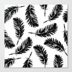 Black feathers Canvas Print
