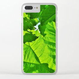 GREEN LEAVES CANOPY OF GIANT RHUBARB Clear iPhone Case