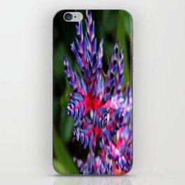 Bromeliad I iPhone Skin