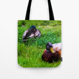 Three's Company II Tote Bag